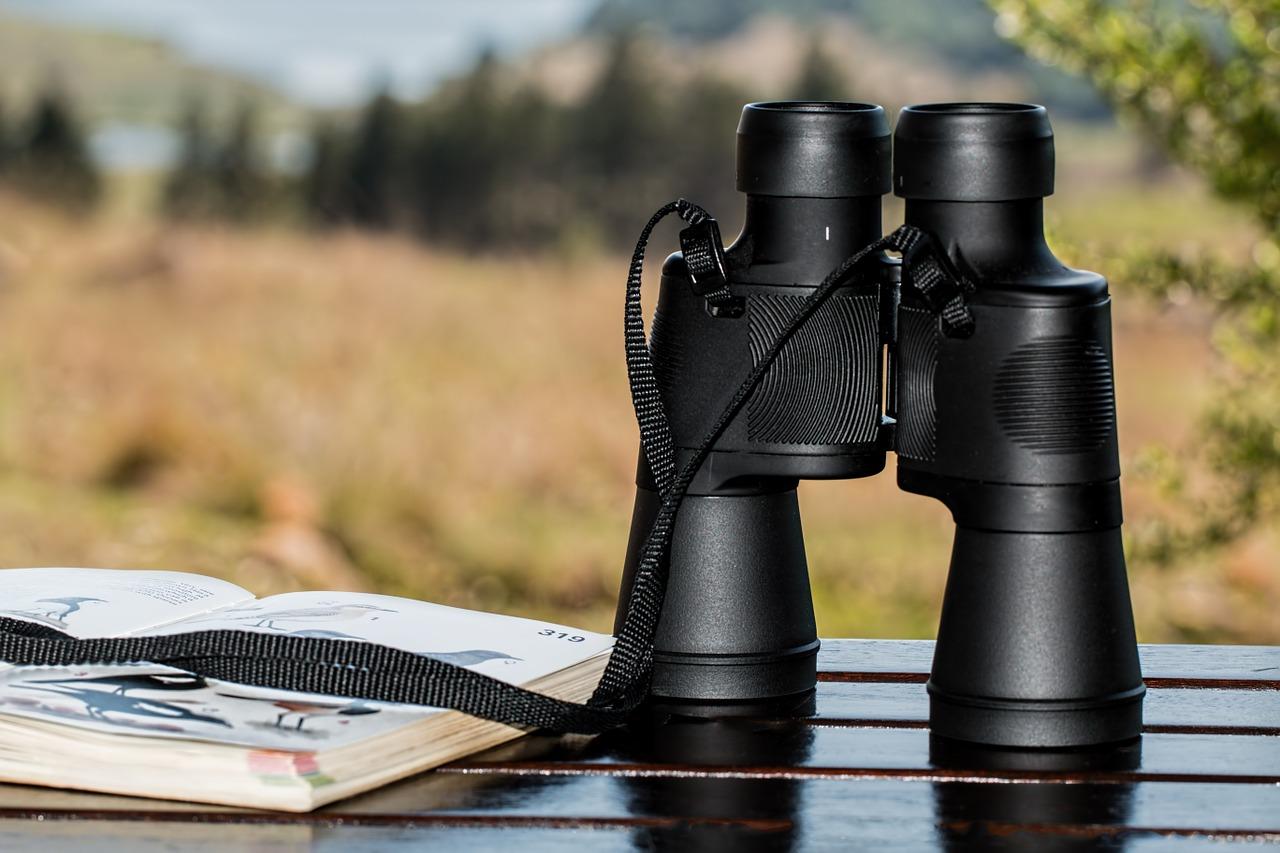 binoculars-negotiation-analysis