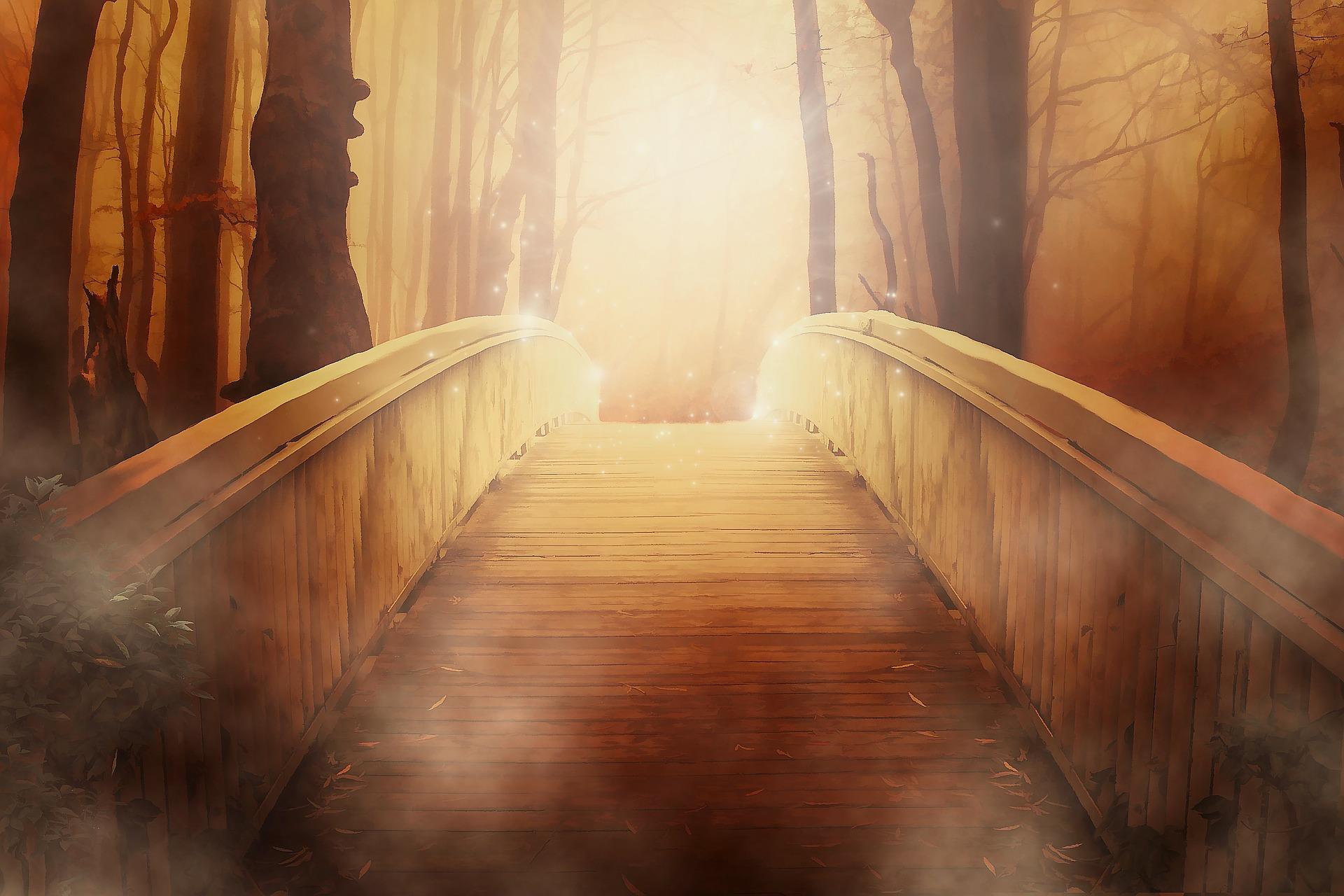 bridge-path.jpg