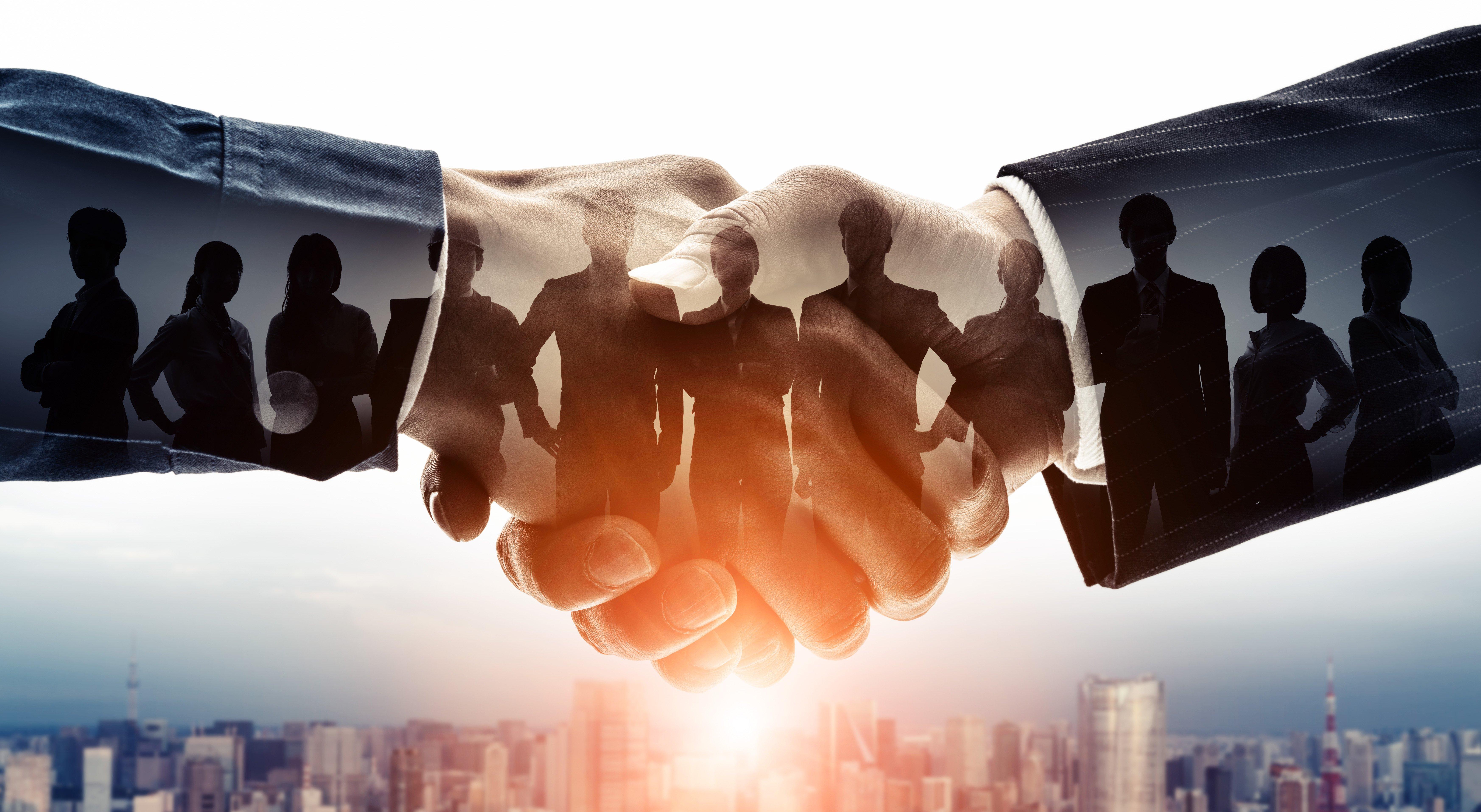 What is Black Swan Group's Negotiation 9™ (N9™)
