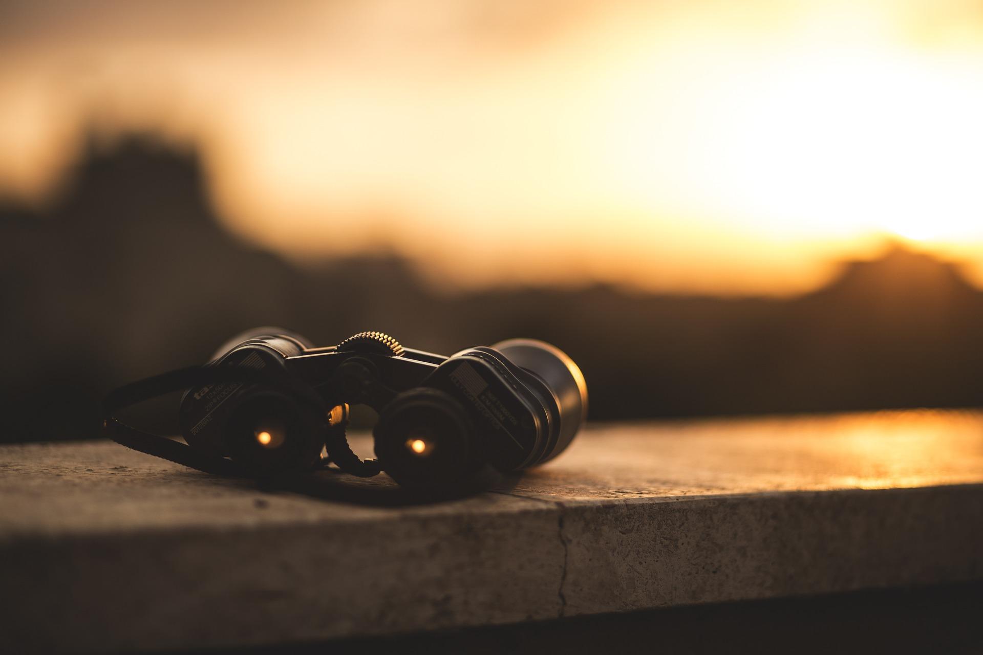 binoculars-2017.jpg